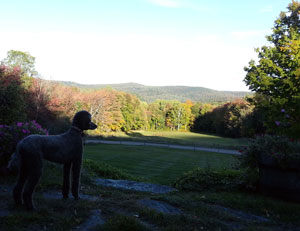 The view from High Meadows Farm on a crisp October evening
