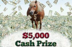 GMHA $5,000 Cash Prize Raffle