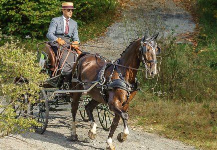 2017-Fall-Driving-Classic-LaPlaca