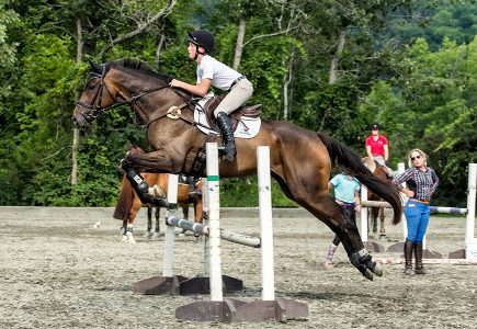 2017-Festival-of-Eventing-Clinic-White