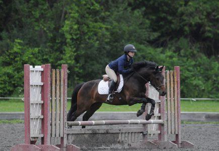 2017-Team-Jumper-Challenge-Pony