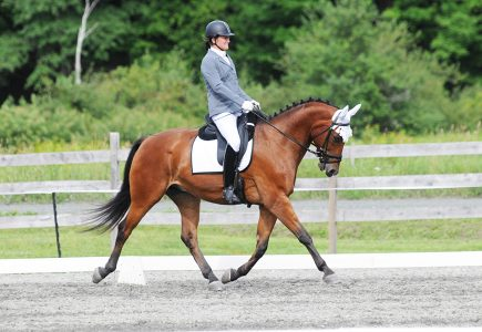 gmha-dressage-days-competition-2018
