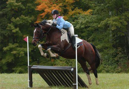 Hunter Pace - Green Mountain Horse Association