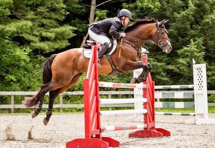 2017-August-horse-trials-davidson