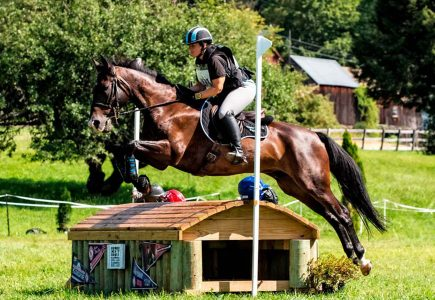 2017-aug-horse-trials-grenier-xc