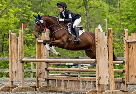 2017-june-horse-trials-stadium-Alminde