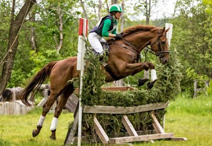 2017-june-horse-trials-ziegler-xc