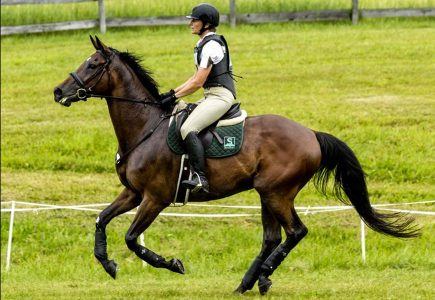 2018-starter-horse-trials-cheston