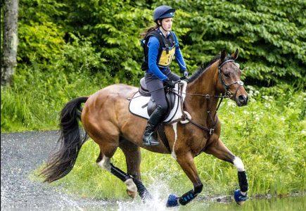 2018-starter-horse-trials-maynard
