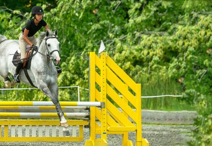 jumper-show-gray-horse-yellow-fence